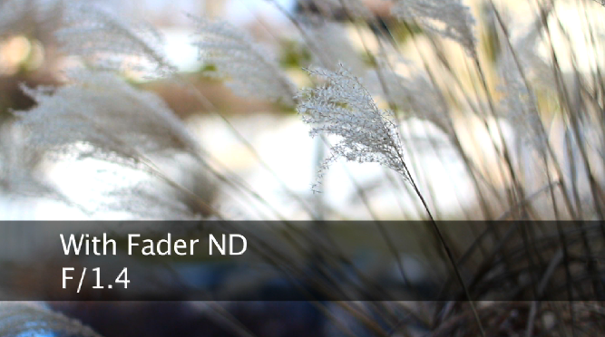 with-fader-nd-1.png