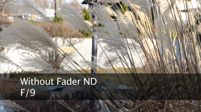 without-fader-nd-1.png