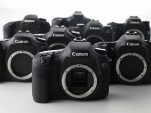 choosing a video dslr
