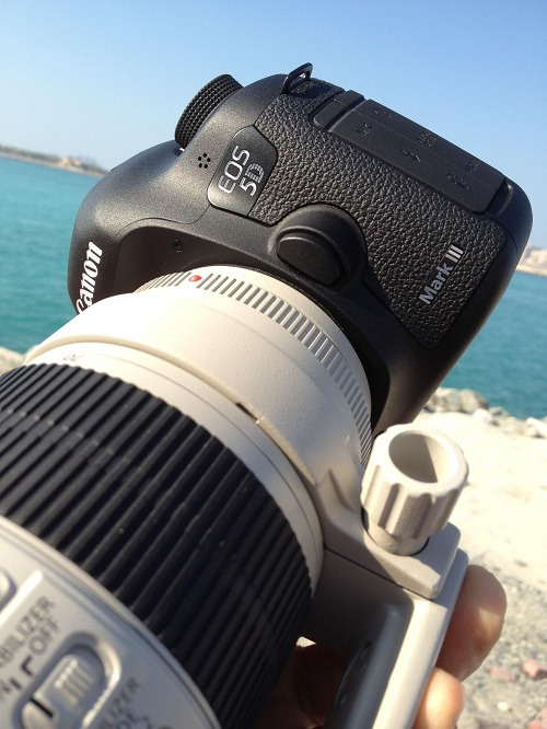 What do You Think of the Canon 5DmkIII News?