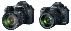 Dave Dugdale Compares the Canon 5D Mark III and the 6D