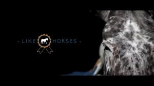Video thumbnail for vimeo video Monday Like: Like Horses - DSLR Video Shooter