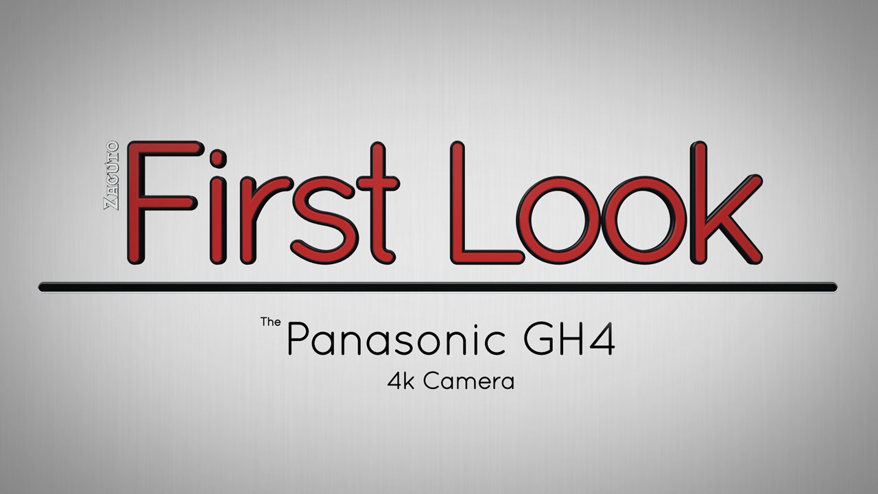 Everything You Need to Know About the Panasonic GH4